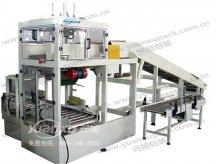 软袋装箱机YK-ZX04,自动装箱机系列